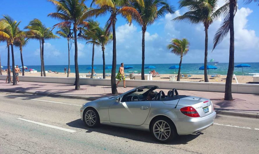 10 Best Things To See In Miami, FL